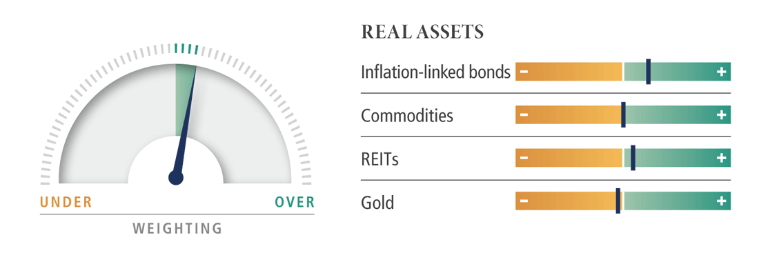 Real Assets dial