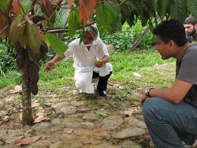 Abhishek next to a cocoa plant.
